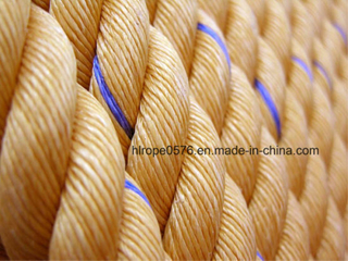 High Quality Twist 3/4 Strand Polypropylene Danline Marine Rope for Fishing