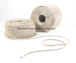 High Quality 3/4 Strand PP Rope Manufacturer Exporter in China